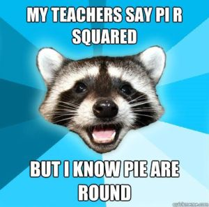 Racoon and Pi Meme